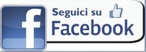 ICONA-SEGUICI-SU-FACEBOOK-300x108